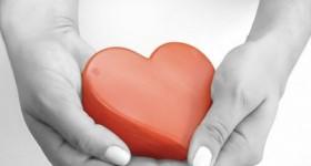 06pae-dozza-donazione-organi1